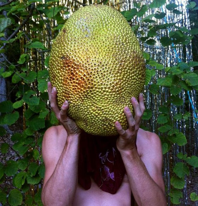 Naomi Shersty, _Jackfruit_, 2014. Archival inkjet print. Courtesy the artist. On view at The Front through December 7, 2014.