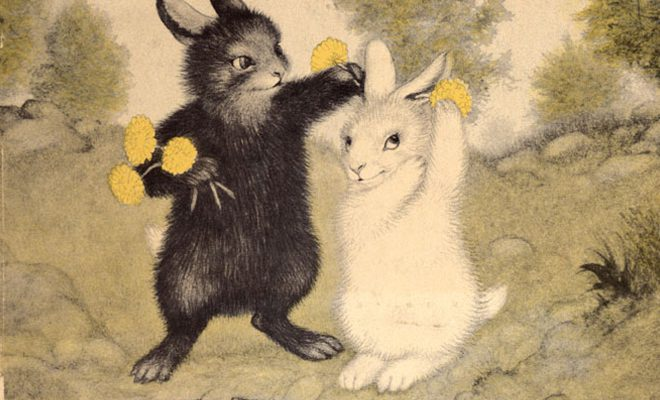 Black Rabbits and White Indians
